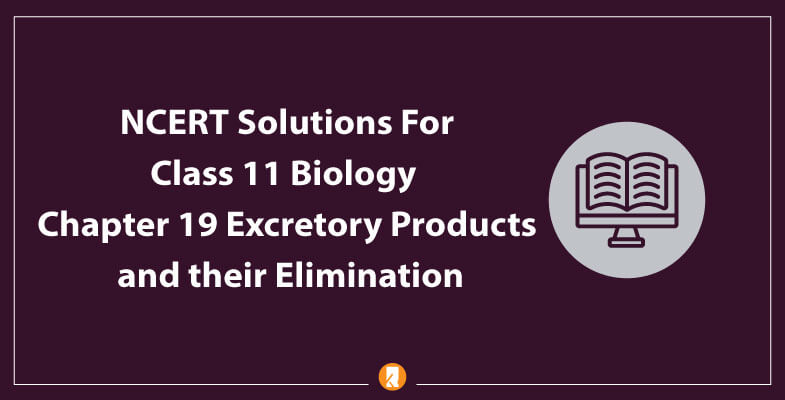 NCERT-Solutions-For-Class-11-Biology-Chapter-19-Excretory-Products-and-their-Elimination