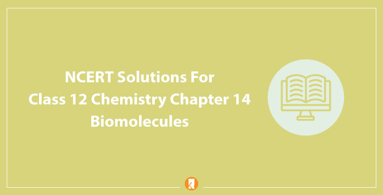 NCERT Solutions For Class 12 Chemistry Chapter 14 Biomolecules