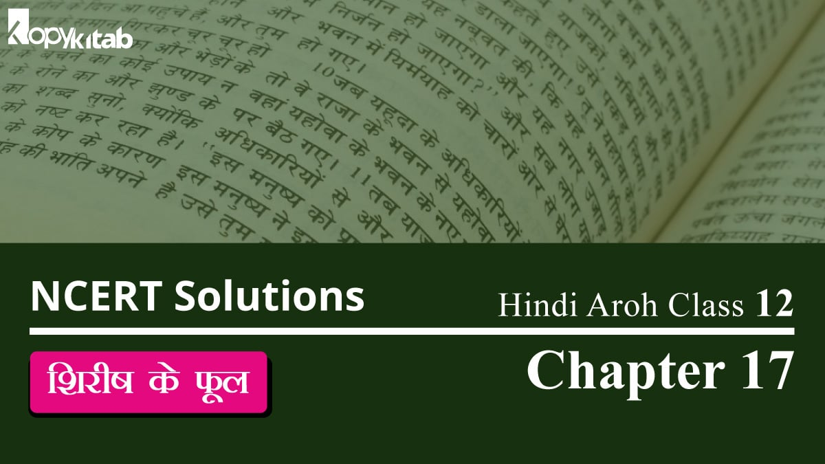 NCERT Solutions for Class 12 Hindi Aroh Chapter 17
