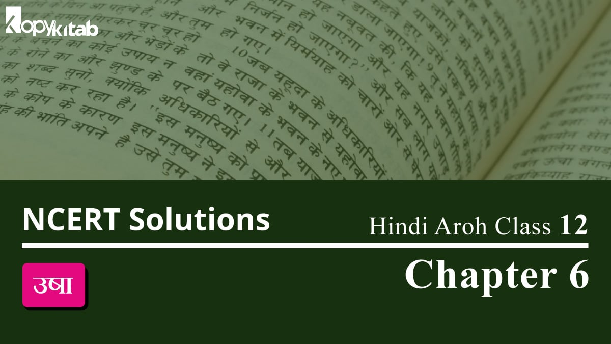 NCERT Solutions for Class 12 Hindi Aroh Chapter 6