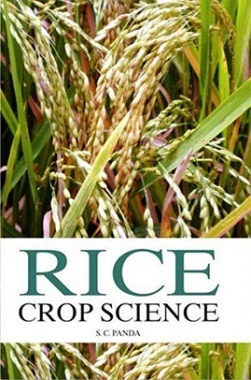 Rice Crop Science