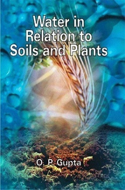 Water In Relation To Soils And Plants