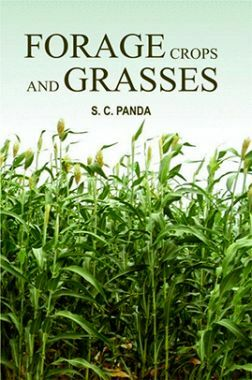 Forage Crops and Grasses