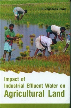 Impact of Industrial Effluent Water on Agricultural Land