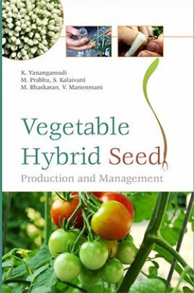 Vegetable Hybrid Seed Production And Management