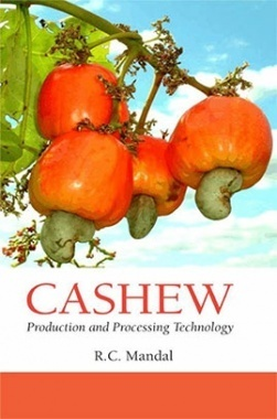 Cashew : Production and Processing Technology