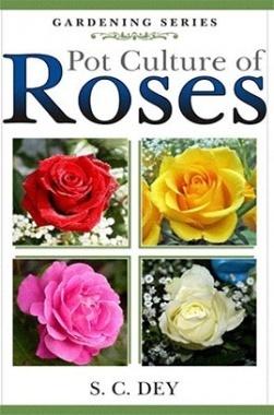 Pot Culture of Roses (PB)