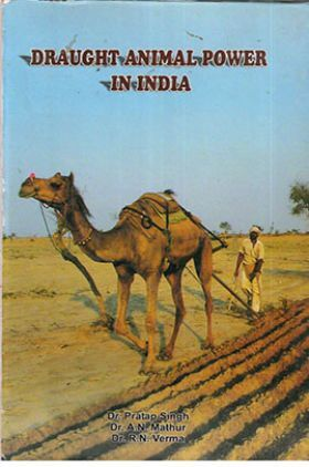 Draught Animal Power in India