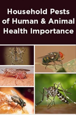 Household Pests Of Human And Animal Health Importance