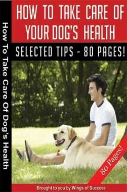 How To Take Care Of Your Dog's Health