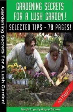 Gardening Secrets For A Lush Garden!