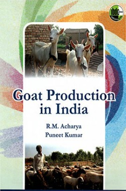 Goat Production In India