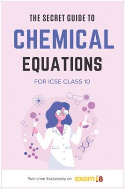 Exam18 The Secret Guide To Writing Chemical Equations In ICSE Class10 Chemistry