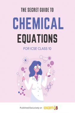 Exam18 ICSE Class 10 Secret Guide To Writing Balanced Chemical Equations In Chemistry