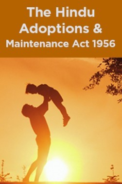 The Hindu Adoptions And Maintenance Act 1956