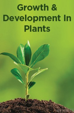 Growth And Development In Plants