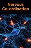 Nervous Co-ordination