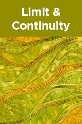 Limit & Continuity