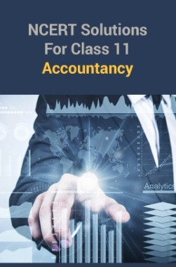 ncert accountancy book class 11 in hindi pdf download