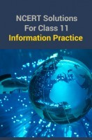 NCERT Solutions For Class 11 Information Practice