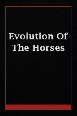 Evolution Of The Horses