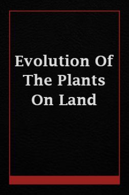 Evolution Of The Plants On Land