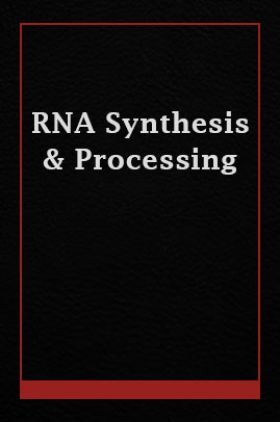 RNA Synthesis And Processing