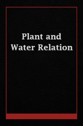 Plant and Water Relation
