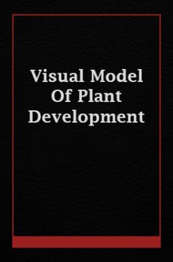 Visual Model Of Plant Development