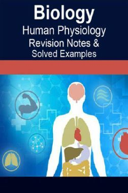 Download Biology Human Physiology Revision Notes & Solved Examples by Panel  Of Experts PDF Online