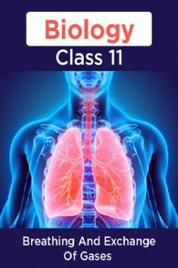 Biology-Breathing And Exchange Of Gases Class11