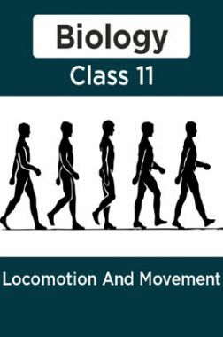 Biology-Locomotion And Movement Class11