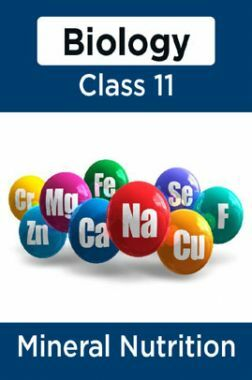 Biology-Mineral Nutrition Class11