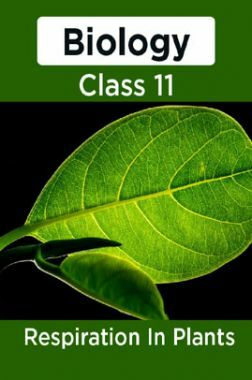 Biology-Respiration In Plants Class11
