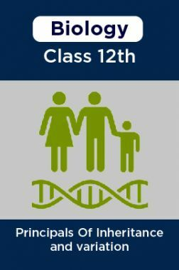 Biology-Principals Of Inheritance and variation Class 12th