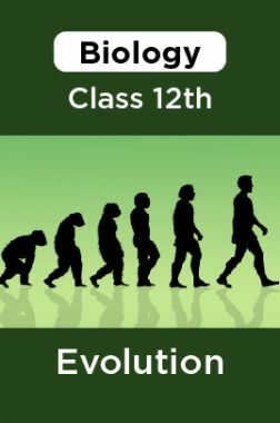 Biology-Evolution Class 12th