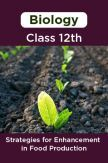 Biology-Strategies for Enhancement in Food Production Class 12th