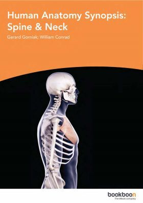Humane Anatomy Synopsis Spine And Neck