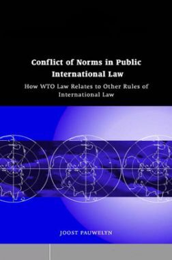 Conflict Of Norms In Public International Law