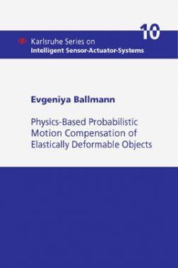 Physics-Based Probabilistic Motion Compensation