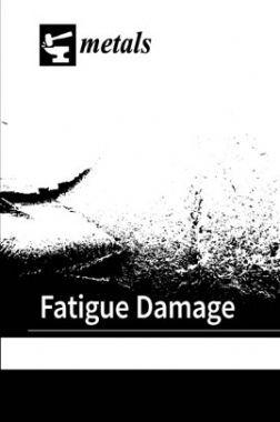 Fatigue Damage