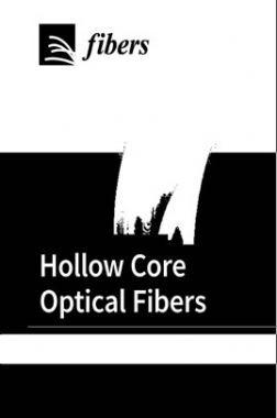 Hollow Core Optical Fibers