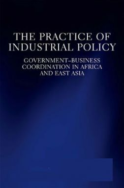 The Practice Of Industrial Policy