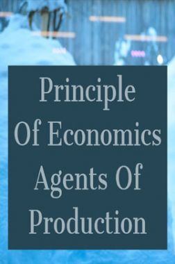 Principle Of Economics Agents Of Production
