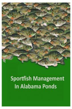 Sportfish Management In Alabama Ponds