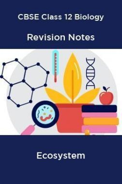 CBSE Class 12 Biology Revision Notes Ecosystem