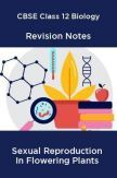 CBSE Class 12 Biology Revision Notes Sexual Reproduction In Flowering Plants