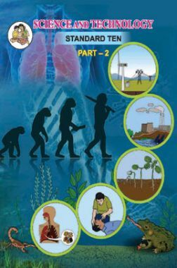 Maharashtra School Textbook Science And Technology Part-2 For Class-10