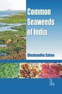 Common Seaweeds Of India