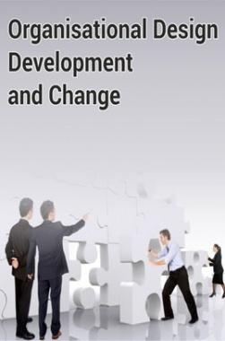 Organisational Design Development and Change